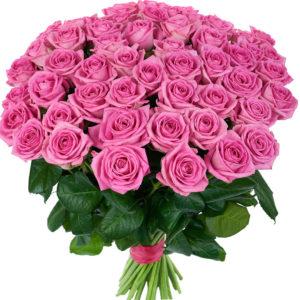 51-pink-rose