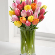 Rush of Color Assorted Tulip Bouquet 2-600x600